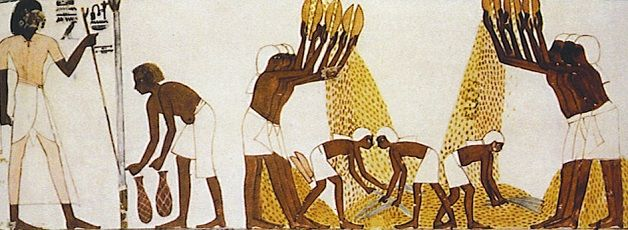 egipcio produccion pan