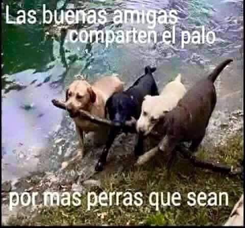Marcianadas_200_09101500 (169)