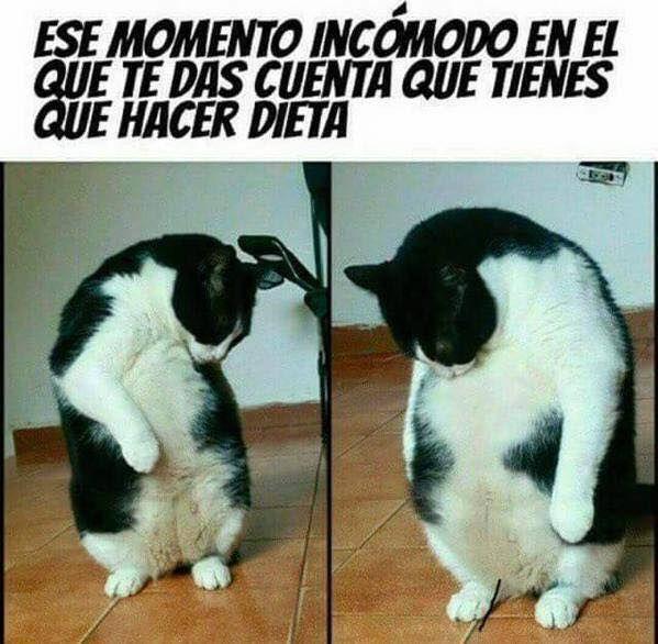 Marcianadas_200_09101500 (229)