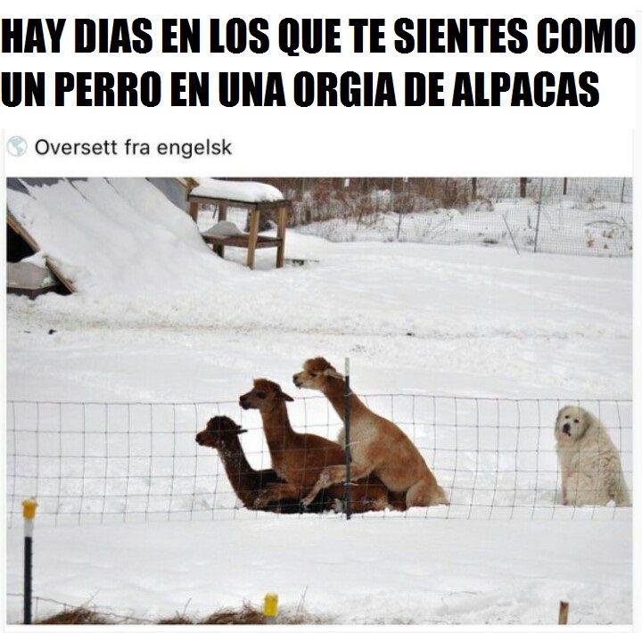 Marcianadas_200_09101500 (247)