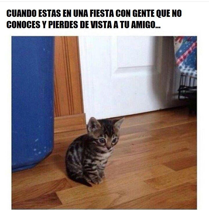 Marcianadas_200_09101500 (250)