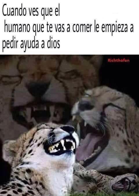 Marcianadas_201_161015 (30)