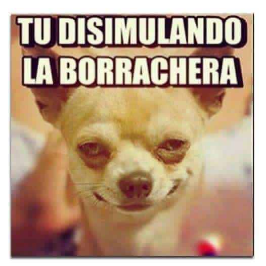 Marcianadas_202_2310150000 (122)