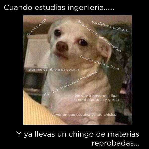 Marcianadas_202_2310150000 (159)