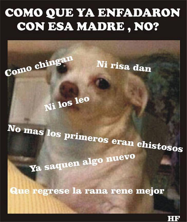 Marcianadas_202_2310150000 (203)