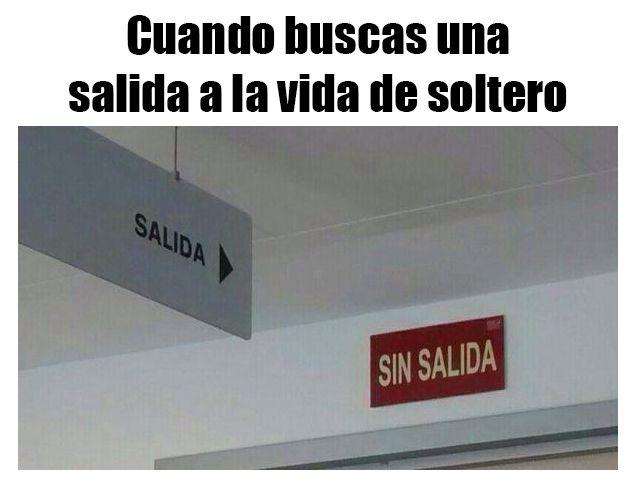 Marcianadas_202_2310150000 (275)