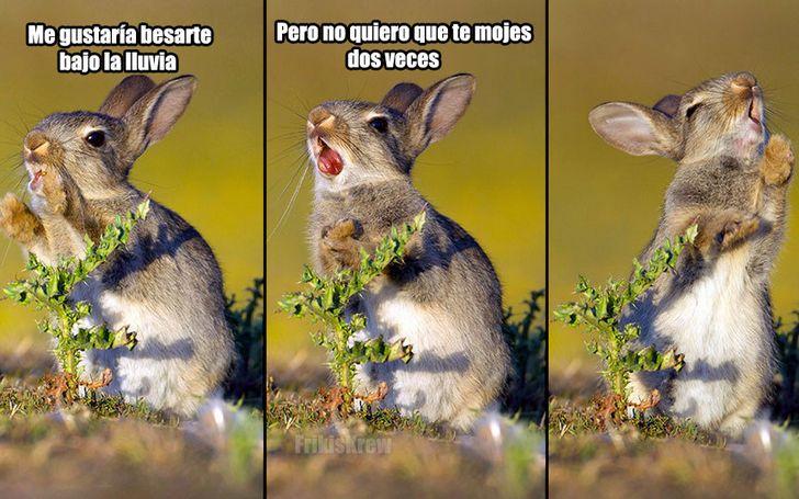 Marcianadas_202_2310150000 (309)
