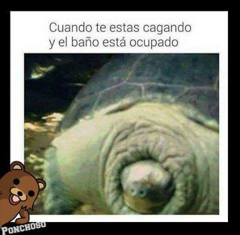 Marcianadas_202_2310150000 (40)