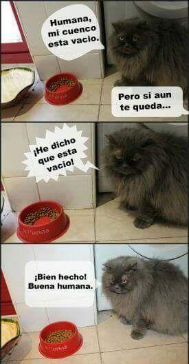 Marcianadas_202_2310150000 (42)