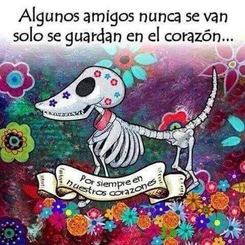 Marcianadas_203_3014151054 (217)