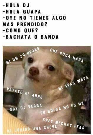 Marcianadas_203_3014151054 (278)
