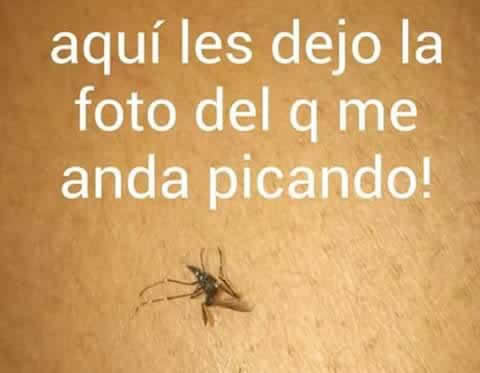 Marcianadas_203_3014151054 (332)