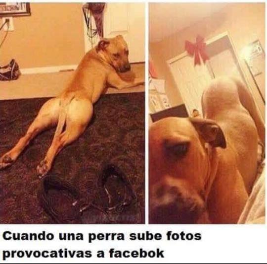Marcianadas_203_3014151054 (35)