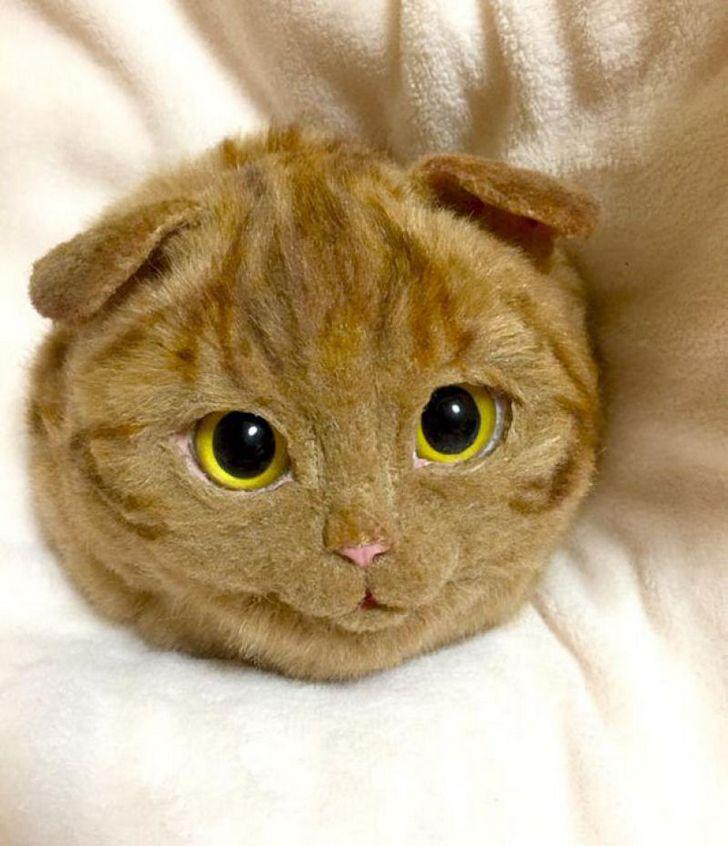 bolsas gato japon Pico (11)