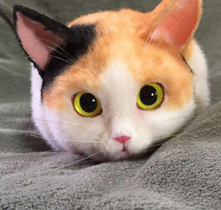 Long Cat Plush Japanese