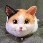 Bolsas con forma de gato en Japón