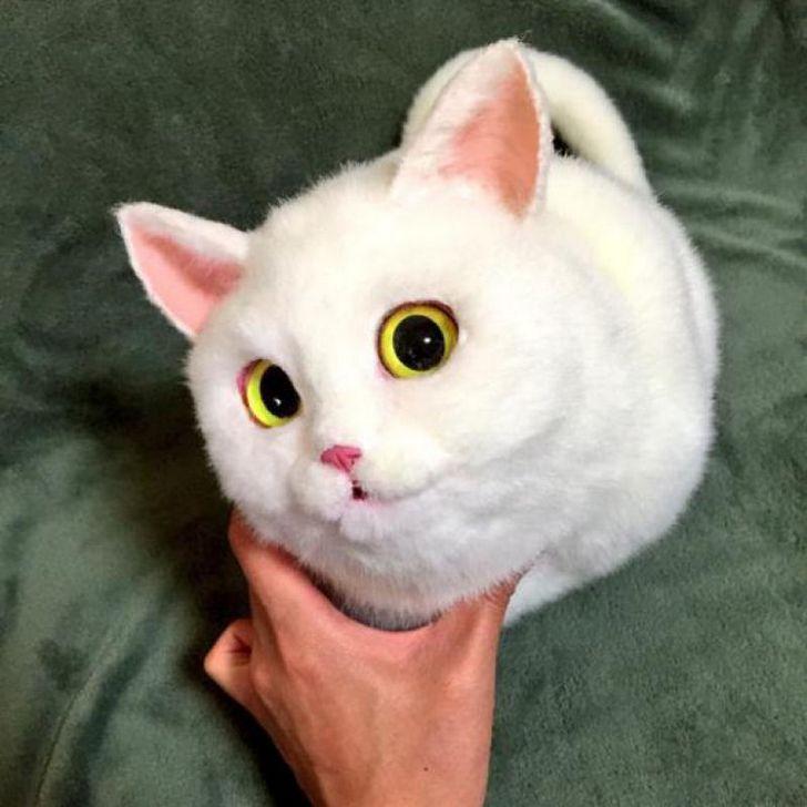bolsas gato japon Pico (6)