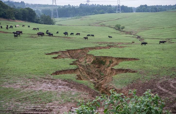fotografias fukushima (2)