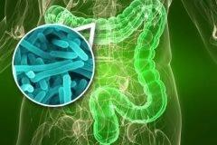 Enfermedad de Crohn, ¿sabes qué es?