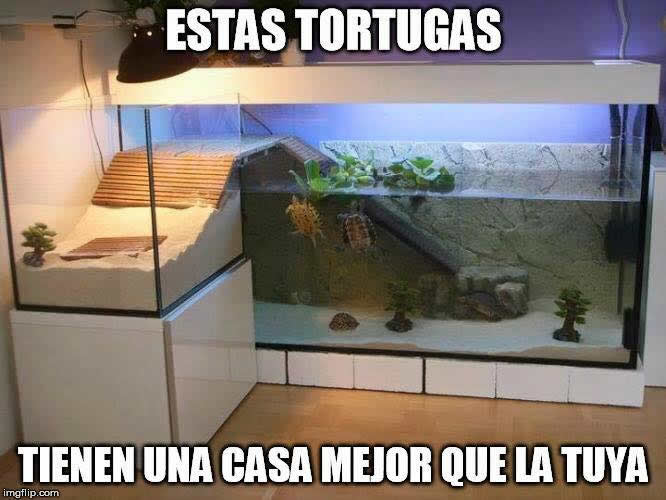 Marcianadas_204_06110015 (179)