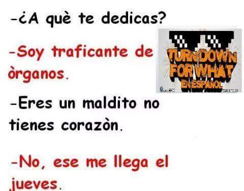 Marcianadas_204_06110015 (86)