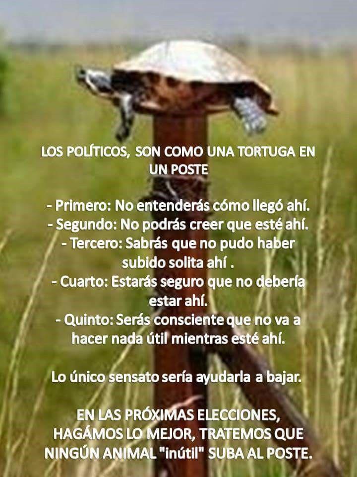 Marcianadas_204_06110015 (89)