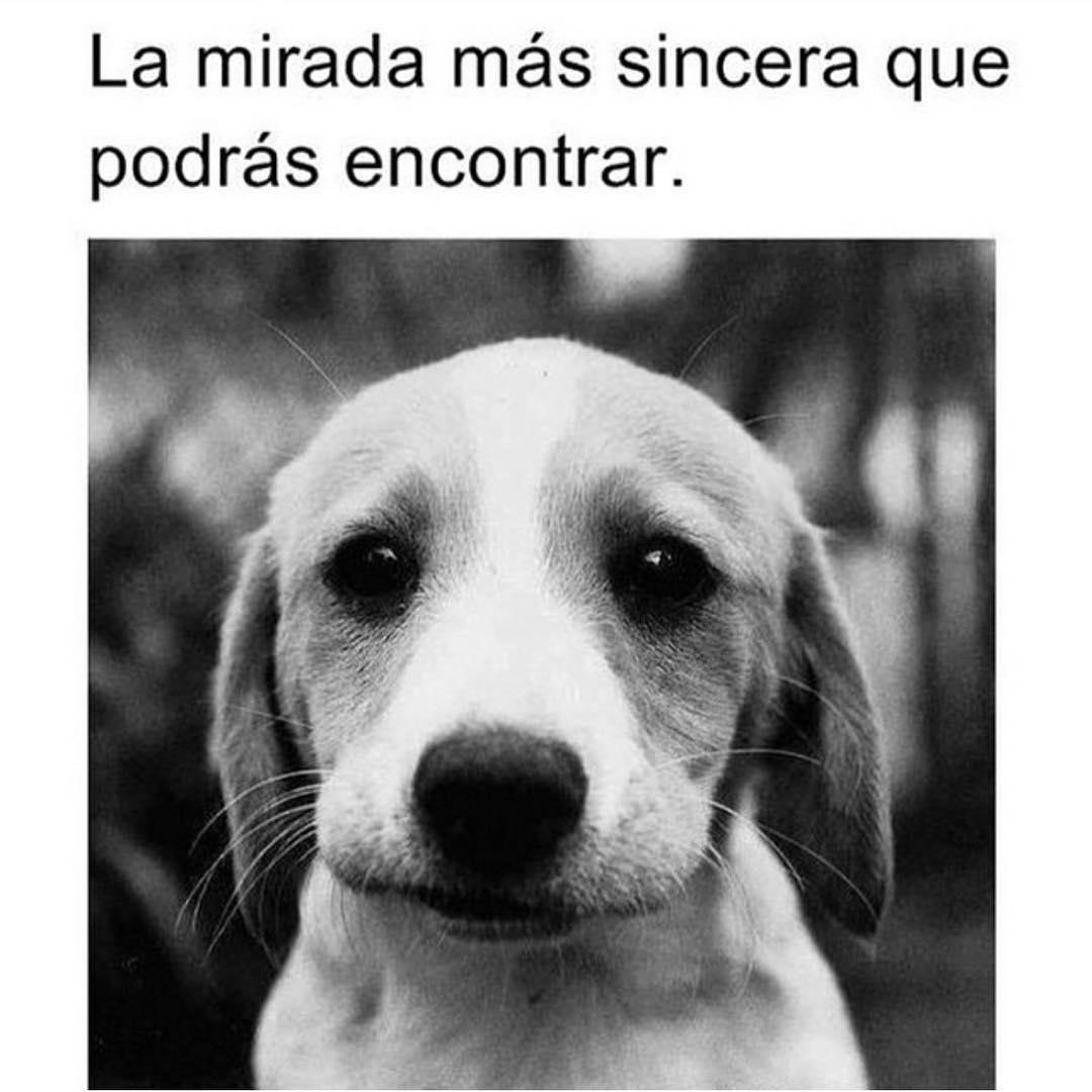 Marcianadas_204_061115 (54)