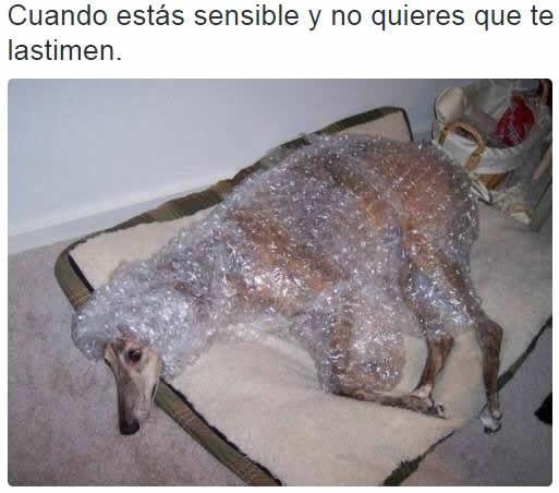 Marcianadas_205_1311150956 (193)