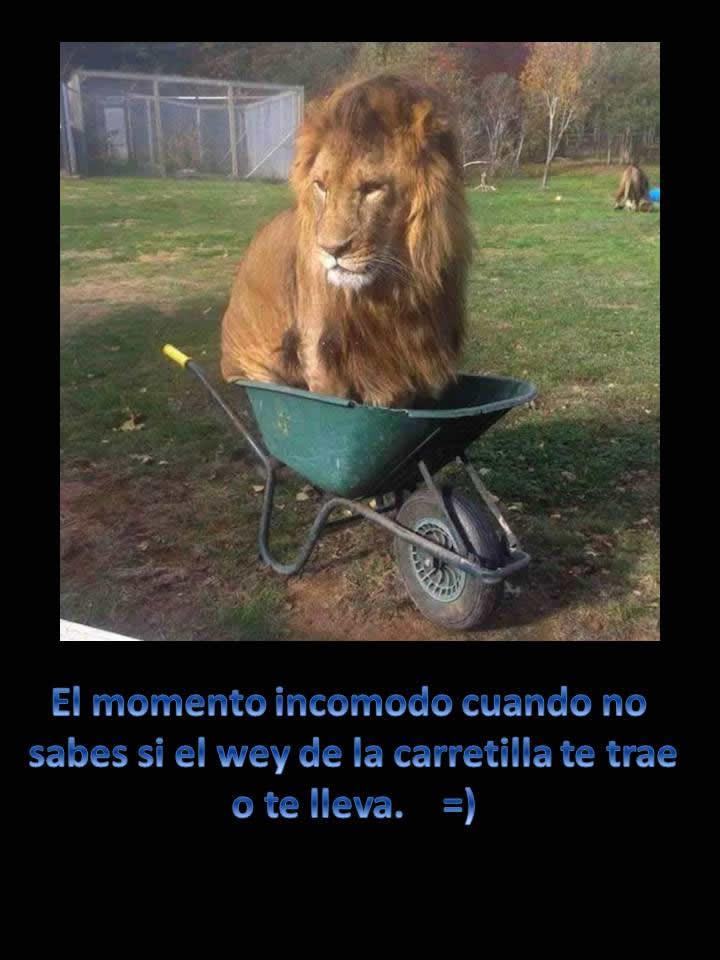 Marcianadas_205_1311150956 (308)