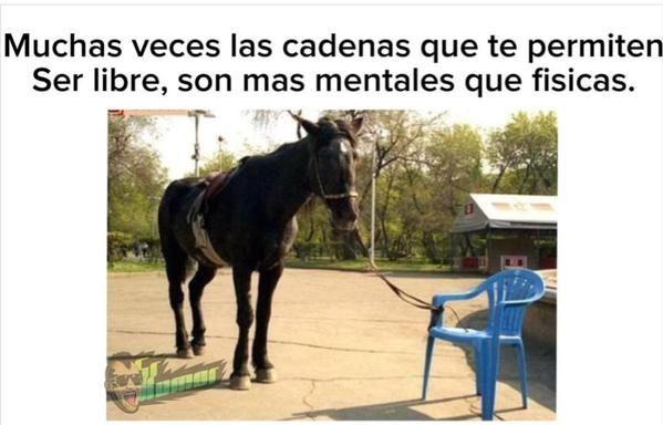 Marcianadas_205_1311150956 (320)