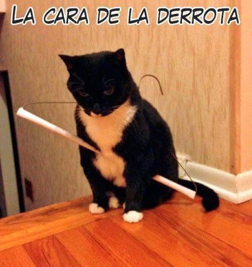 Marcianadas_207_2711150953 (139)