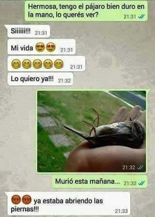 Marcianadas_207_2711150953 (327)