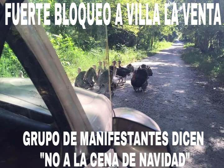 Marcianadas_207_2711150953 (79)