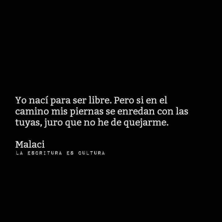Marcianadas_306_2011151005 (226)