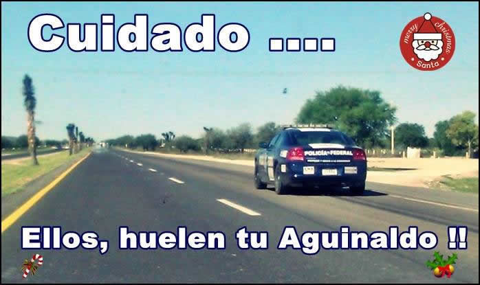 Marcianadas_306_2011151005 (236)