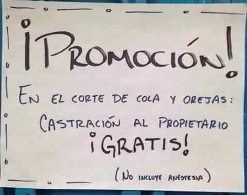 Marcianadas_306_2011151005 (263)
