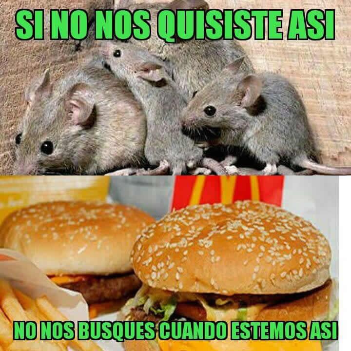 Marcianadas_306_2011151005 (332)