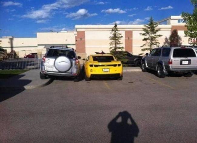estacionaste en el lugar equivocado (338)