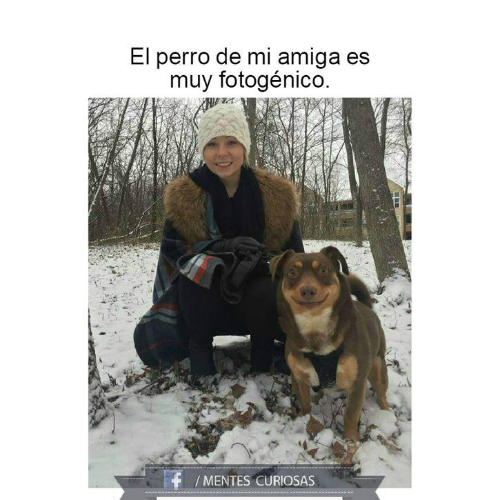 Marcianadas_209_1112150000 (129)