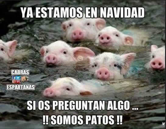 Marcianadas_210_1812150933 (168)