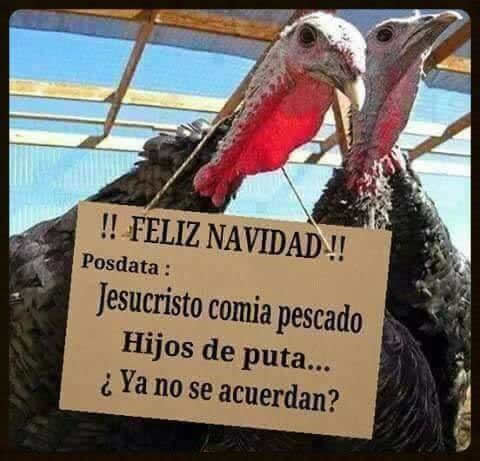 Marcianadas_210_1812150933 (177)
