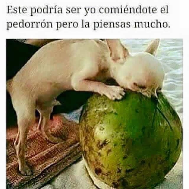 Marcianadas_210_1812150933 (254)