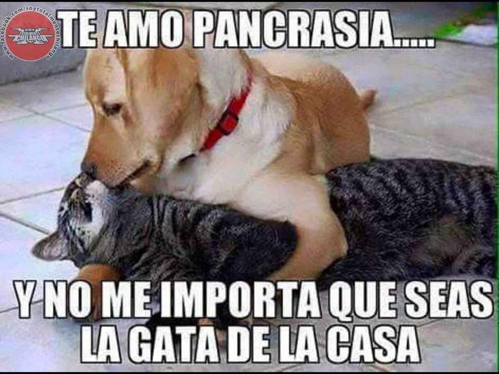 Marcianadas_211_1333251215 (113)