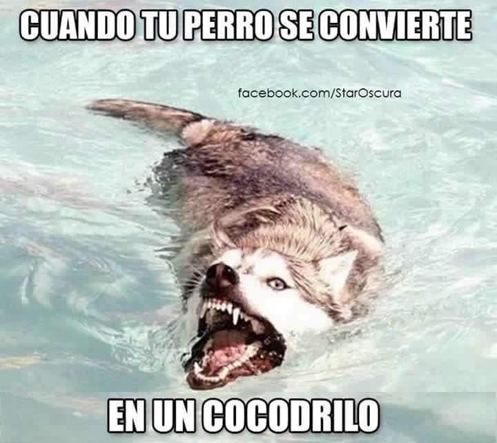 Marcianadas_211_1333251215 (229)
