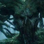 """Un extraño video muestra la """"respiración"""" de la tierra"""