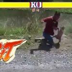 Video: rara pelea entre motociclista y mono