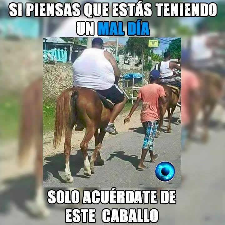 Marcianadas_2014_15011226 (124)