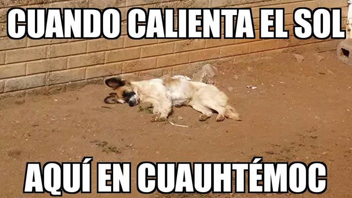 Marcianadas_2014_15011226 (57)