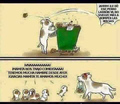 Marcianadas_2014_15011226 (59)