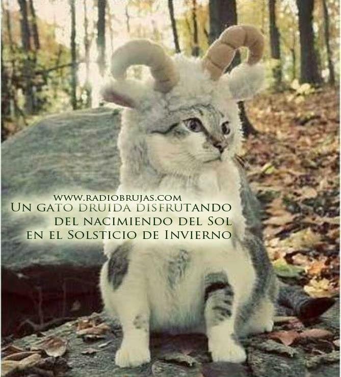 Marcianadas_212_0101160341 (120)